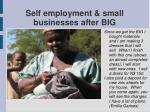self employment small businesses after big