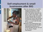 self employment small businesses after big22
