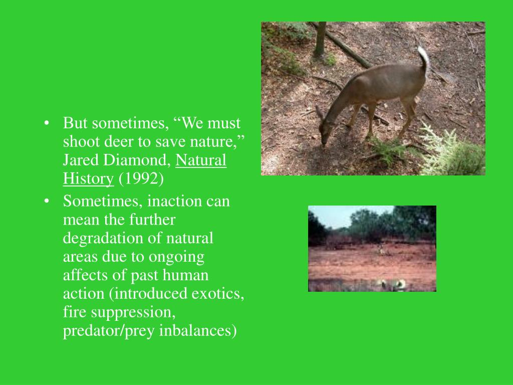 """But sometimes, """"We must shoot deer to save nature,"""" Jared Diamond,"""