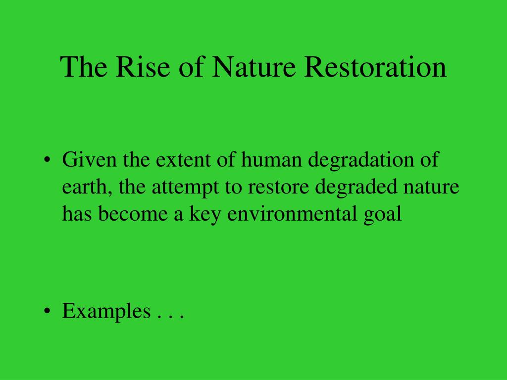 The Rise of Nature Restoration