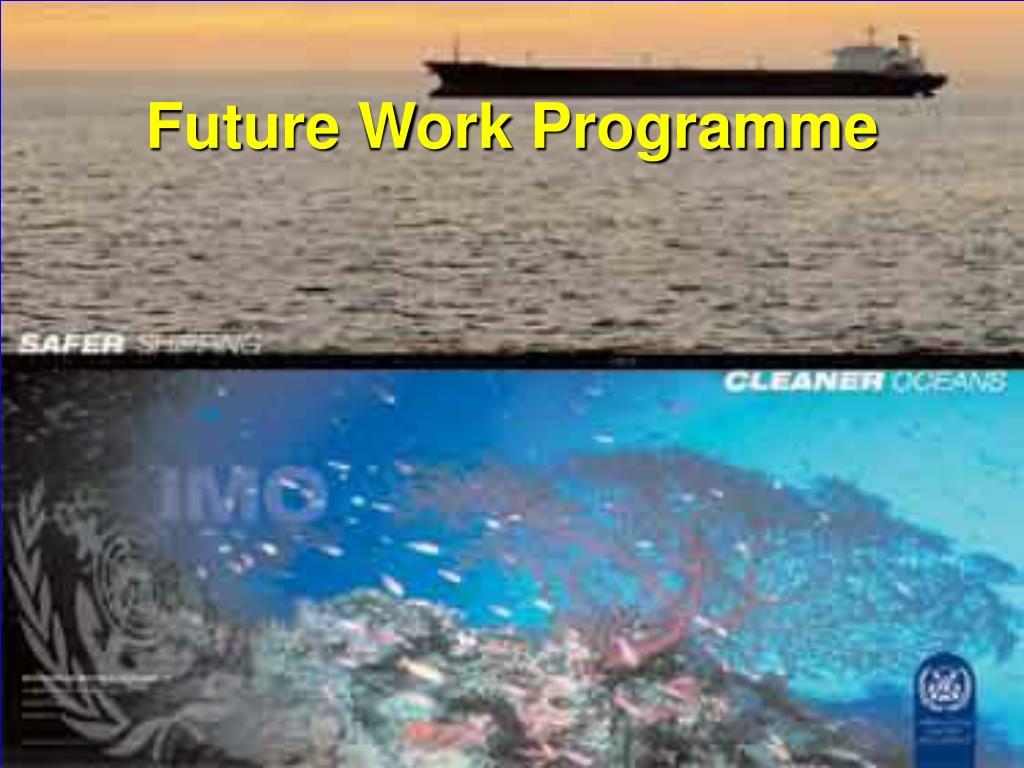 Future Work Programme