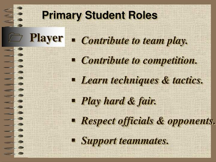 Primary Student Roles