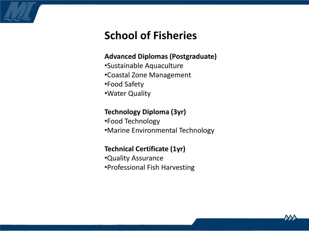 School of Fisheries