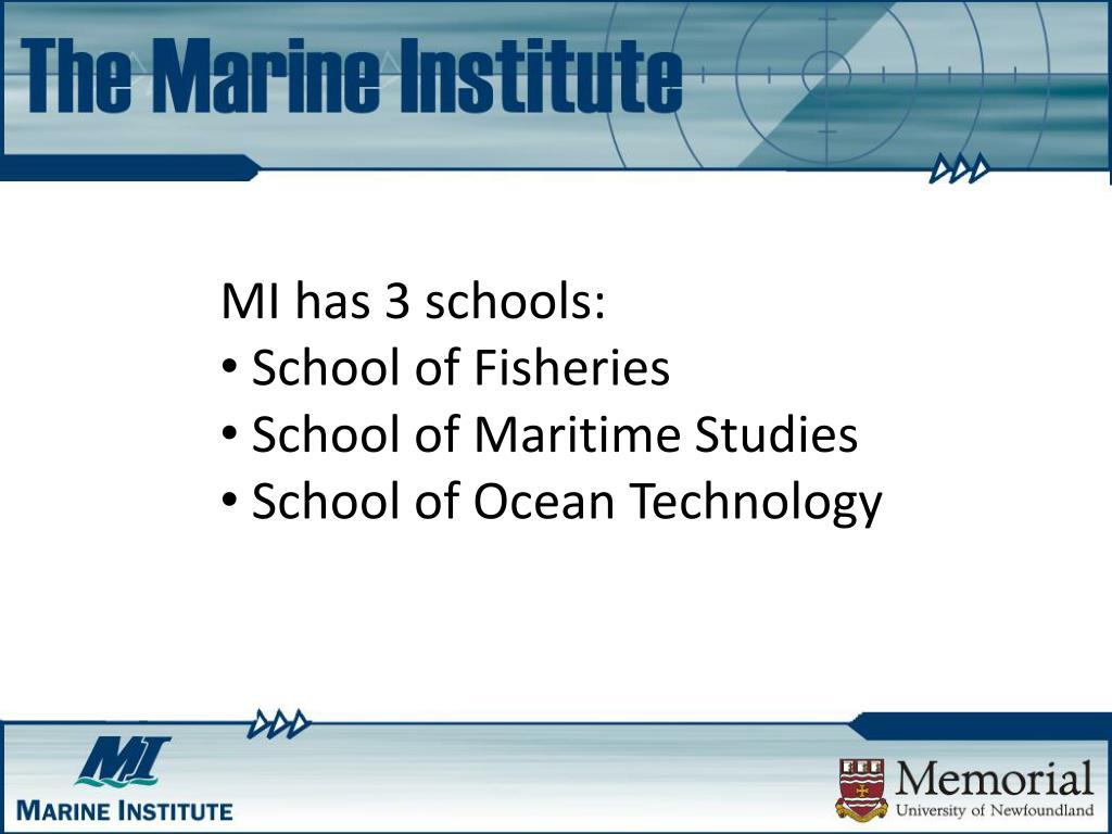 MI has 3 schools: