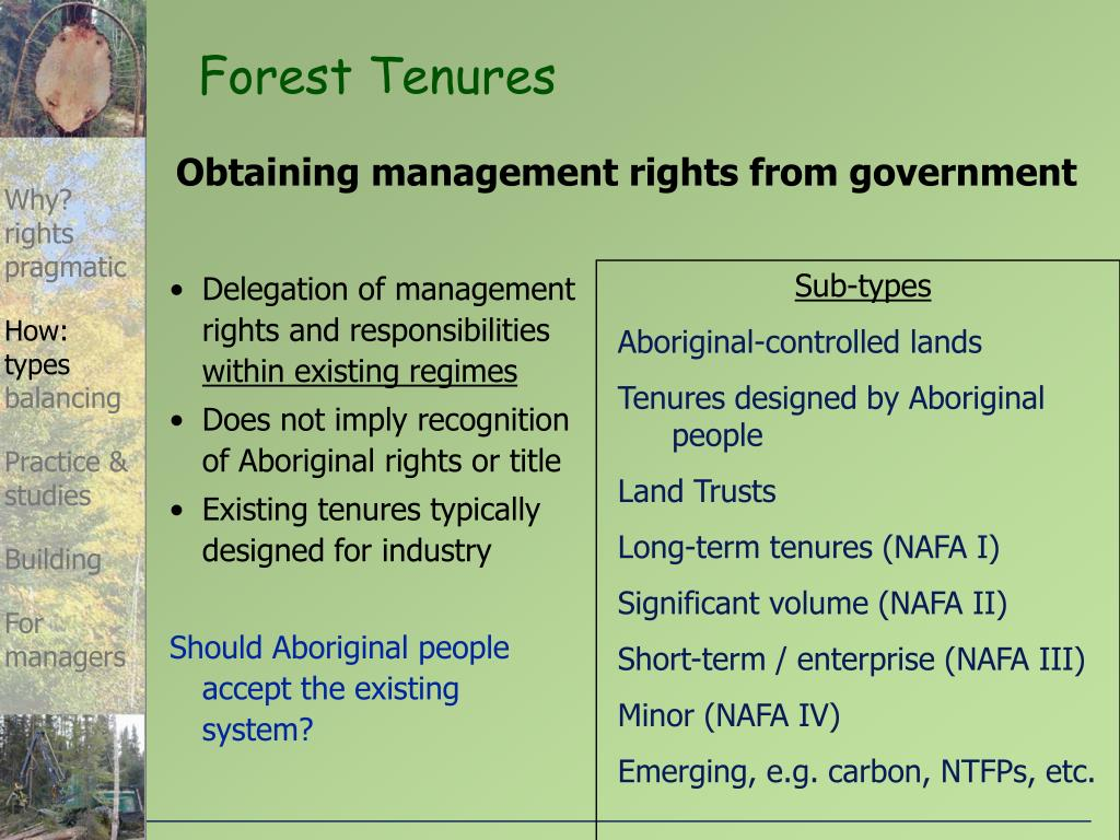 Forest Tenures