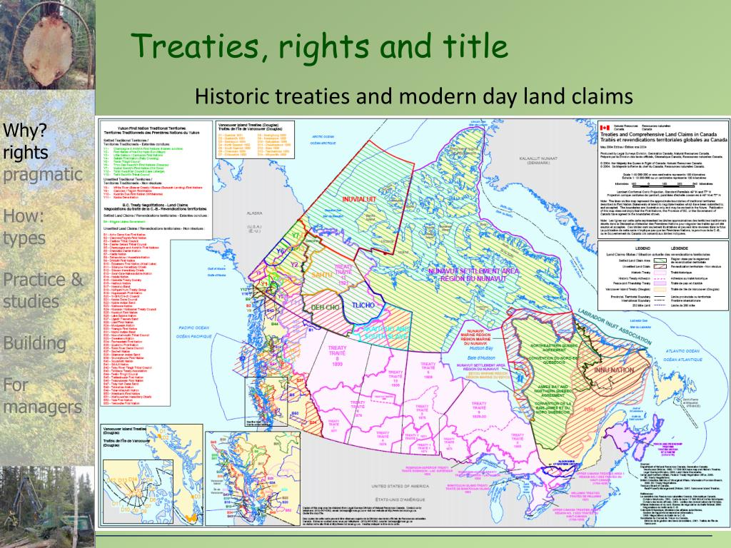 Treaties, rights and title