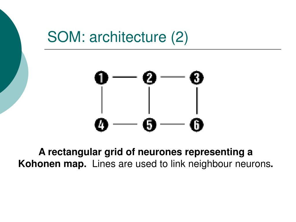 SOM: architecture (2)