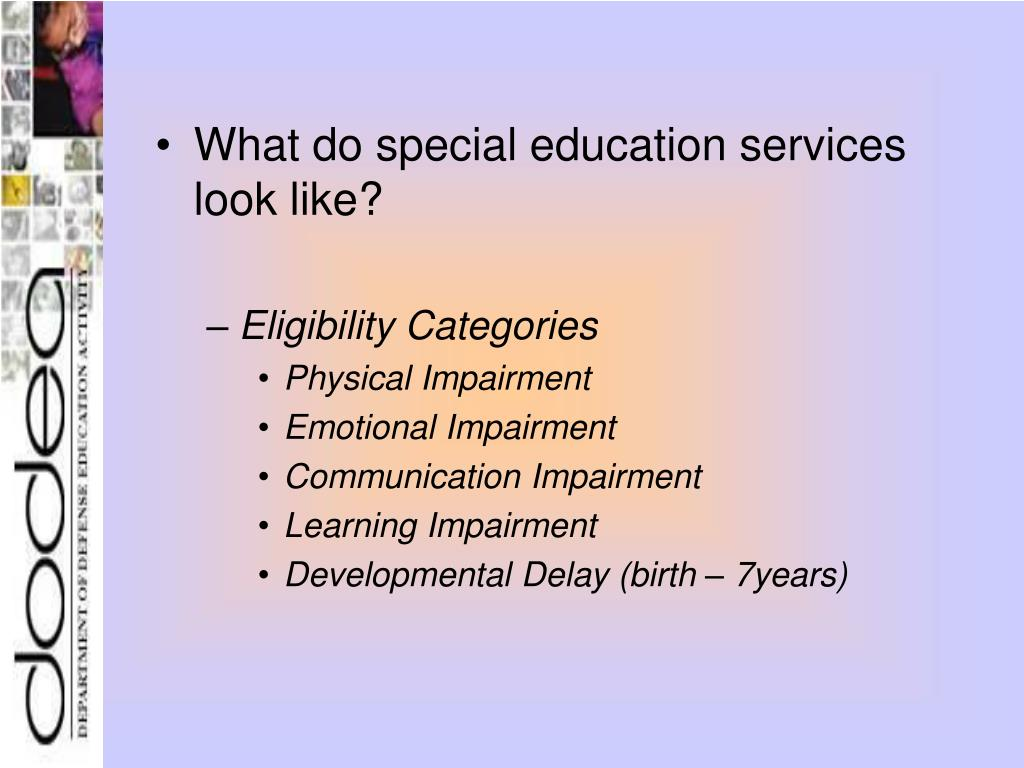 What do special education services look like?