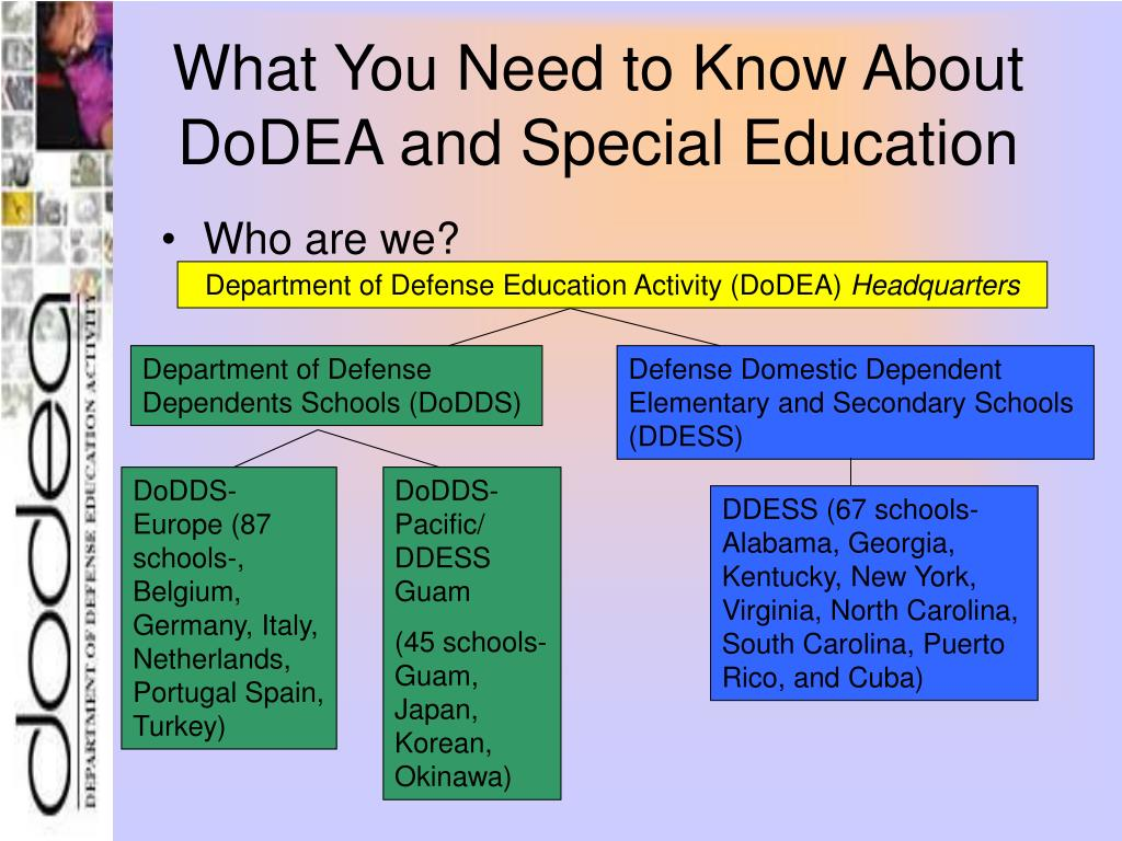 What You Need to Know About DoDEA and Special Education