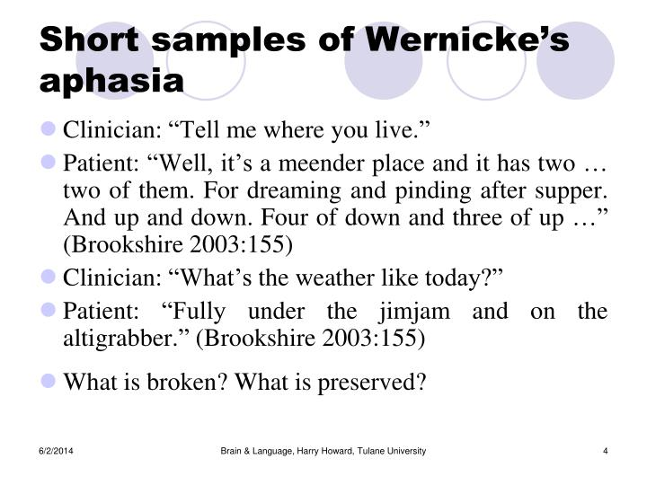 Short samples of Wernicke's aphasia