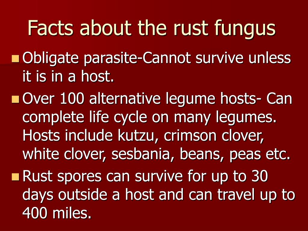 Facts about the rust fungus