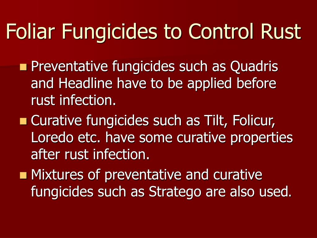 Foliar Fungicides to Control Rust
