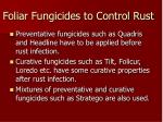 foliar fungicides to control rust20