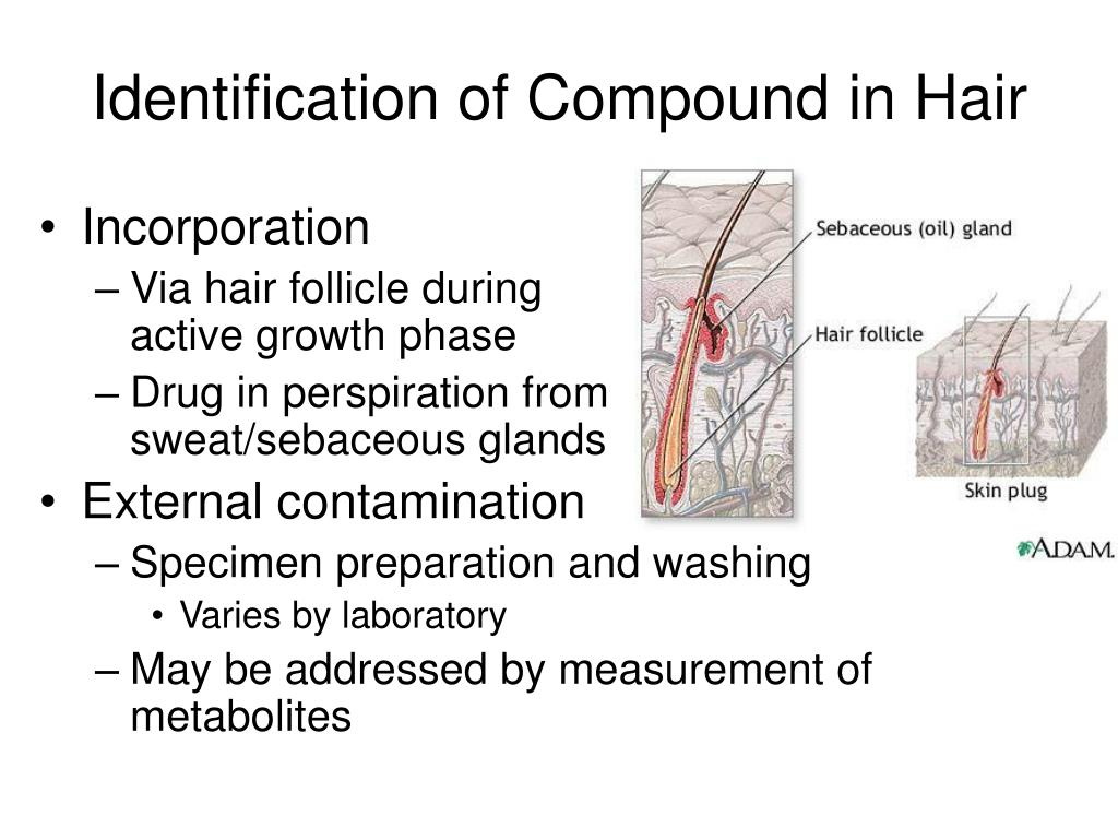 Identification of Compound in Hair