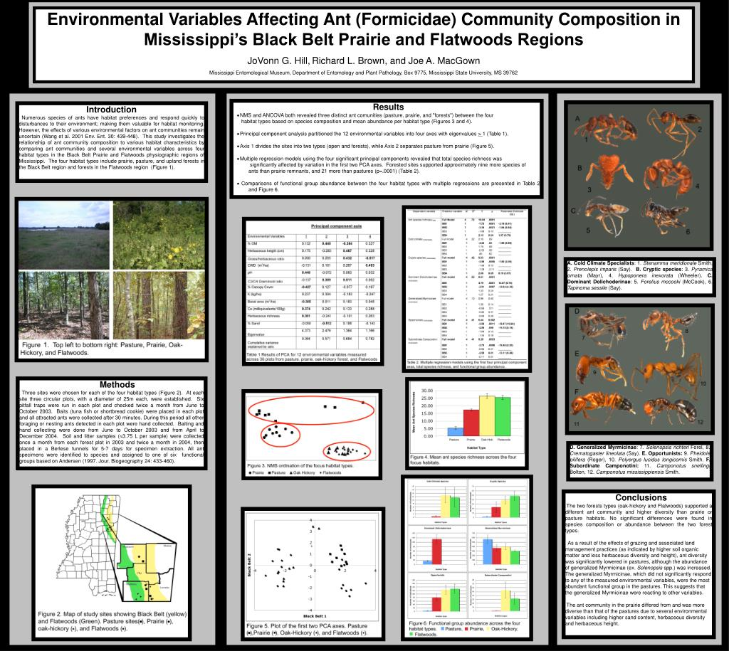 Environmental Variables Affecting Ant (Formicidae) Community Composition in Mississippi's Black Belt Prairie and Flatwoods Regions