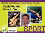 david pichler olympic diver