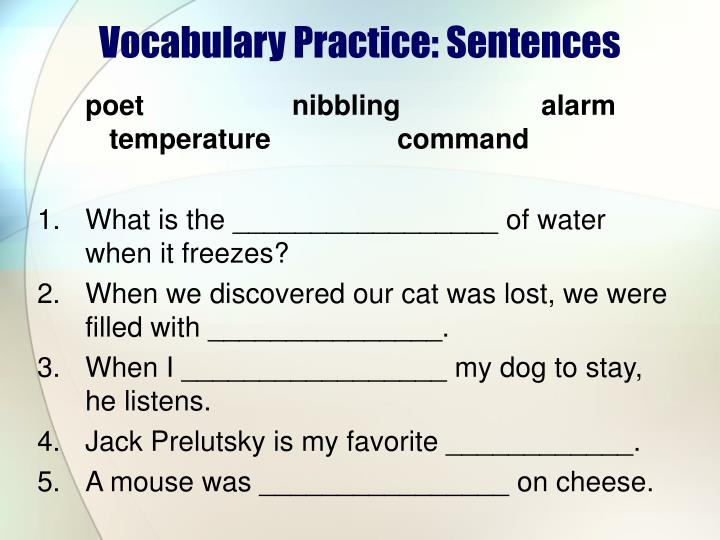 Vocabulary Practice: Sentences