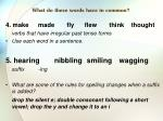 what do these words have in common1