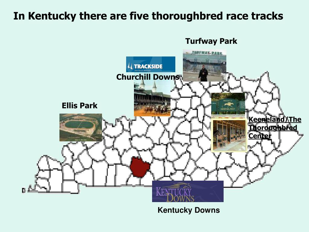 In Kentucky there are five thoroughbred race tracks