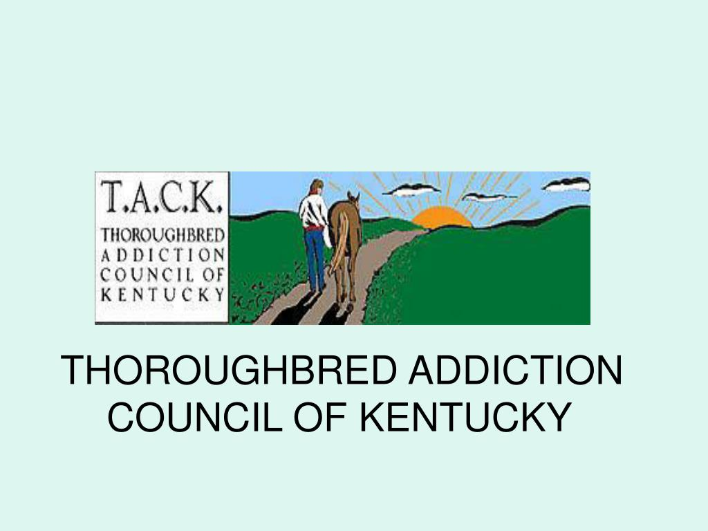 THOROUGHBRED ADDICTION