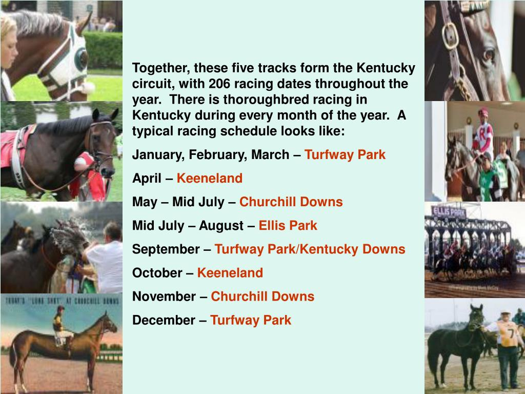 Together, these five tracks form the Kentucky circuit, with 206 racing dates throughout the year.  There is thoroughbred racing in Kentucky during every month of the year.  A typical racing schedule looks like:
