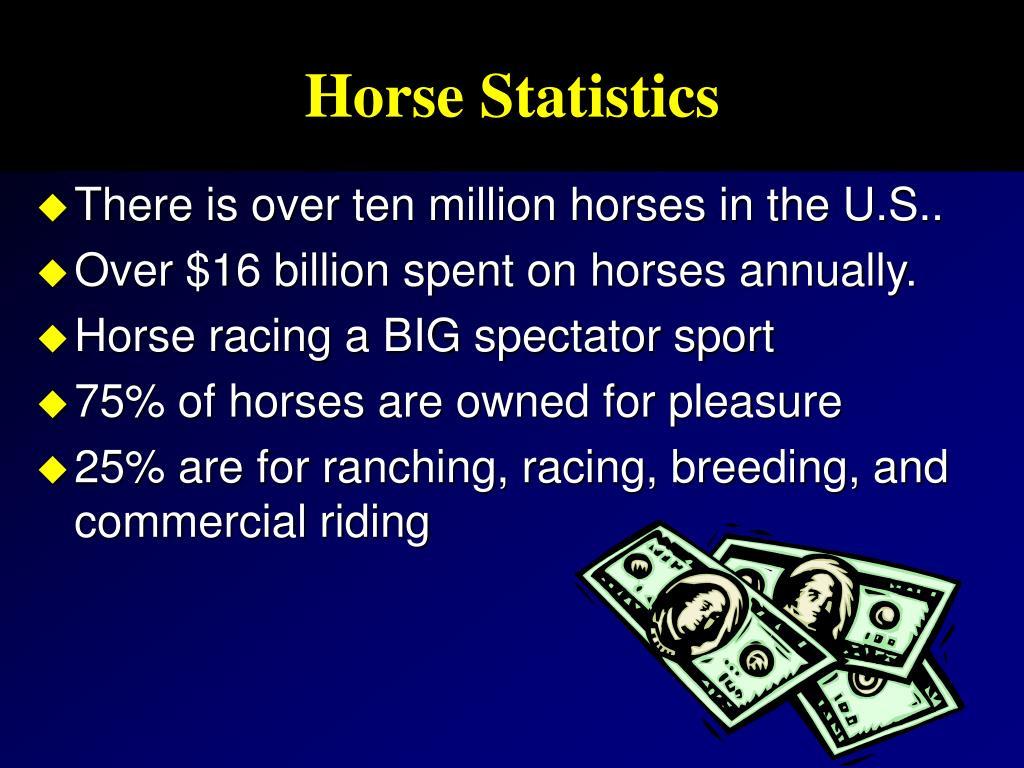 Horse Statistics