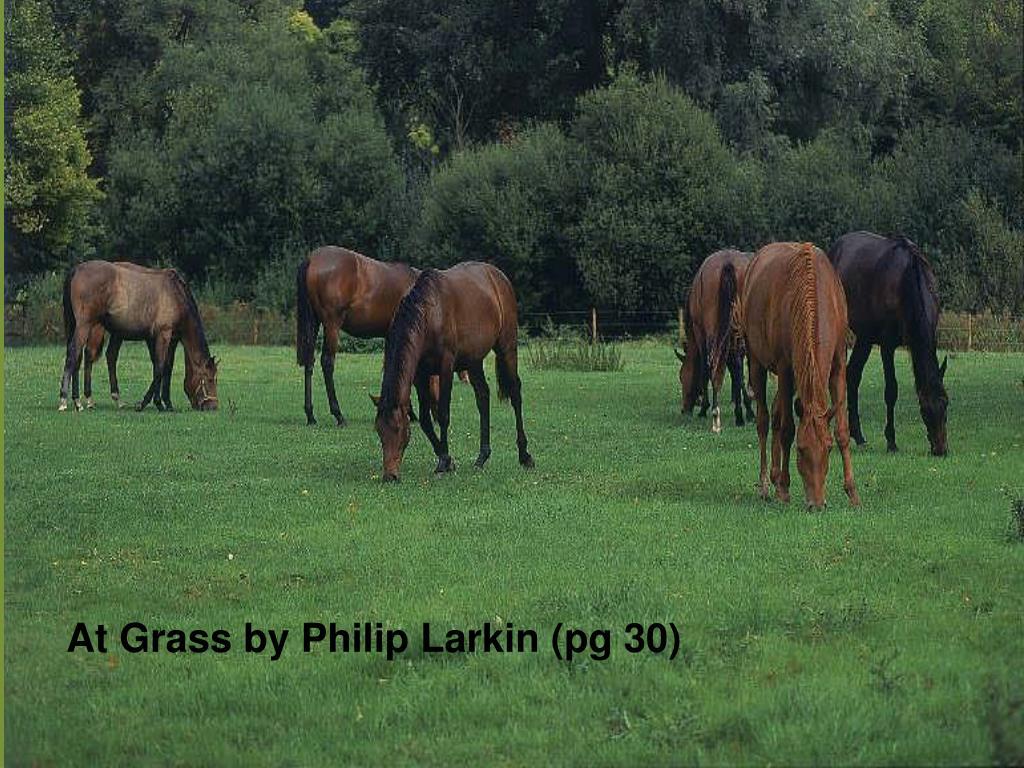 At Grass by Philip Larkin (pg 30)