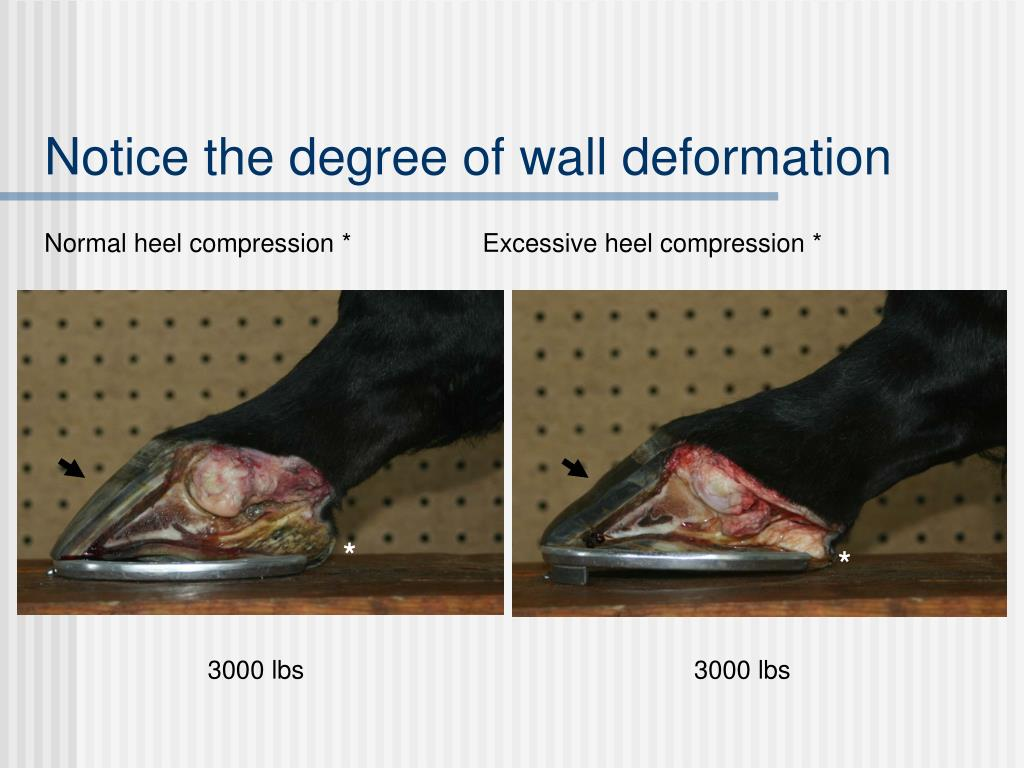Notice the degree of wall deformation
