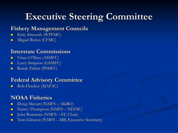 Executive steering committee