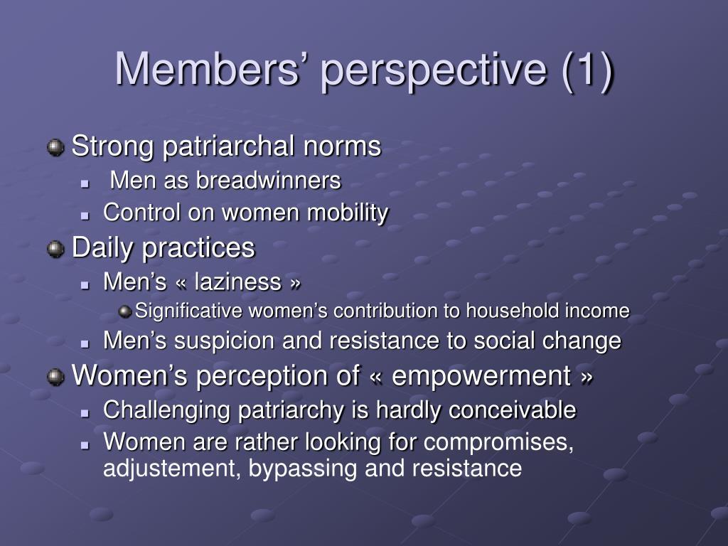 Members' perspective (1)