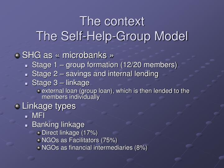 The context the self help group model
