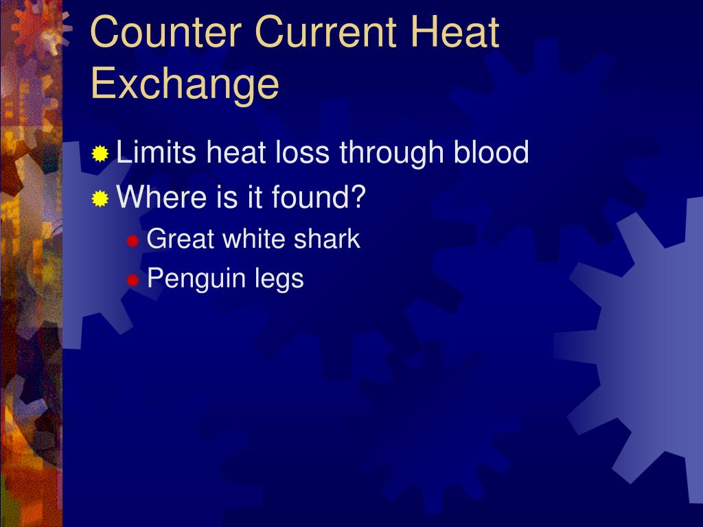 Counter Current Heat Exchange