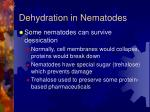dehydration in nematodes