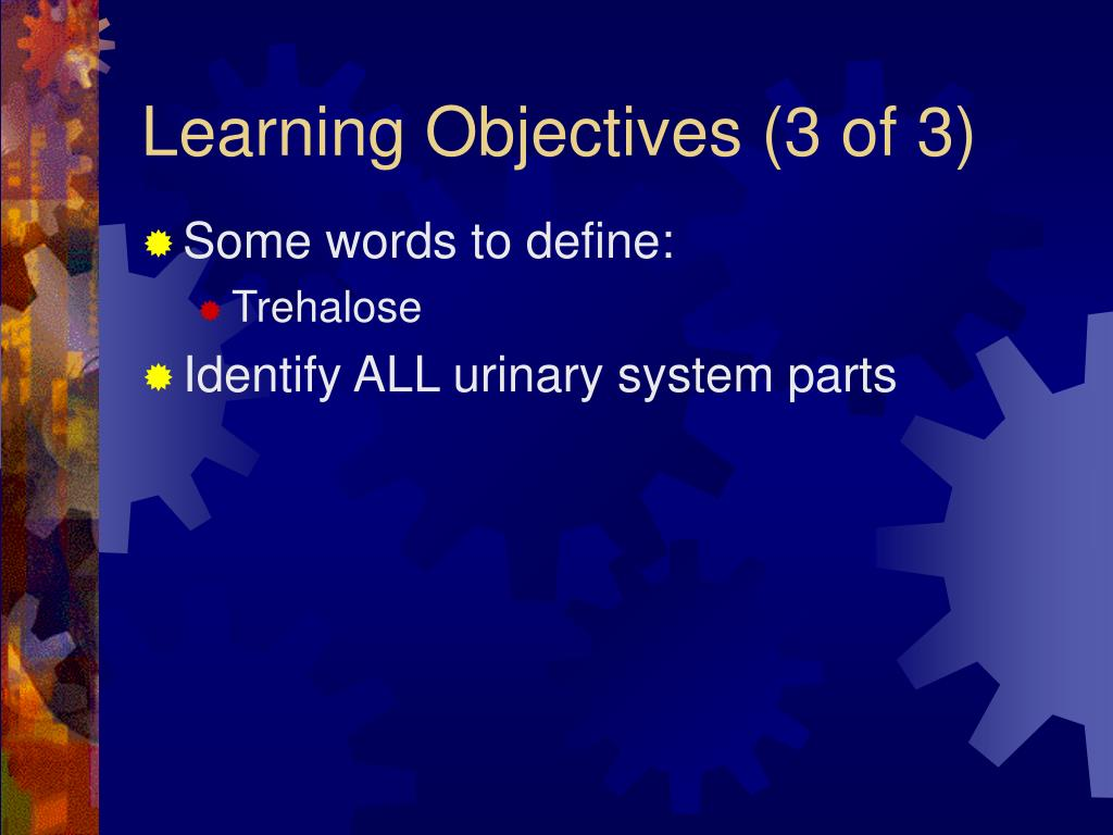 Learning Objectives (3 of 3)