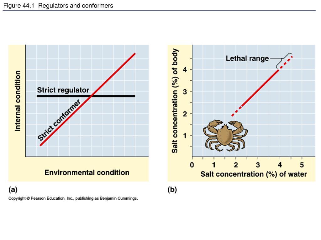 Figure 44.1  Regulators and conformers