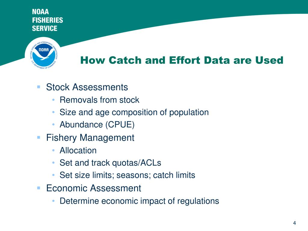 How Catch and Effort Data are Used