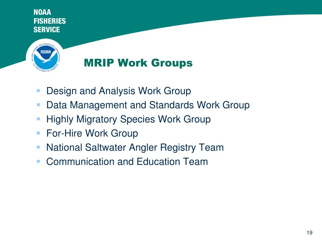 MRIP Work Groups