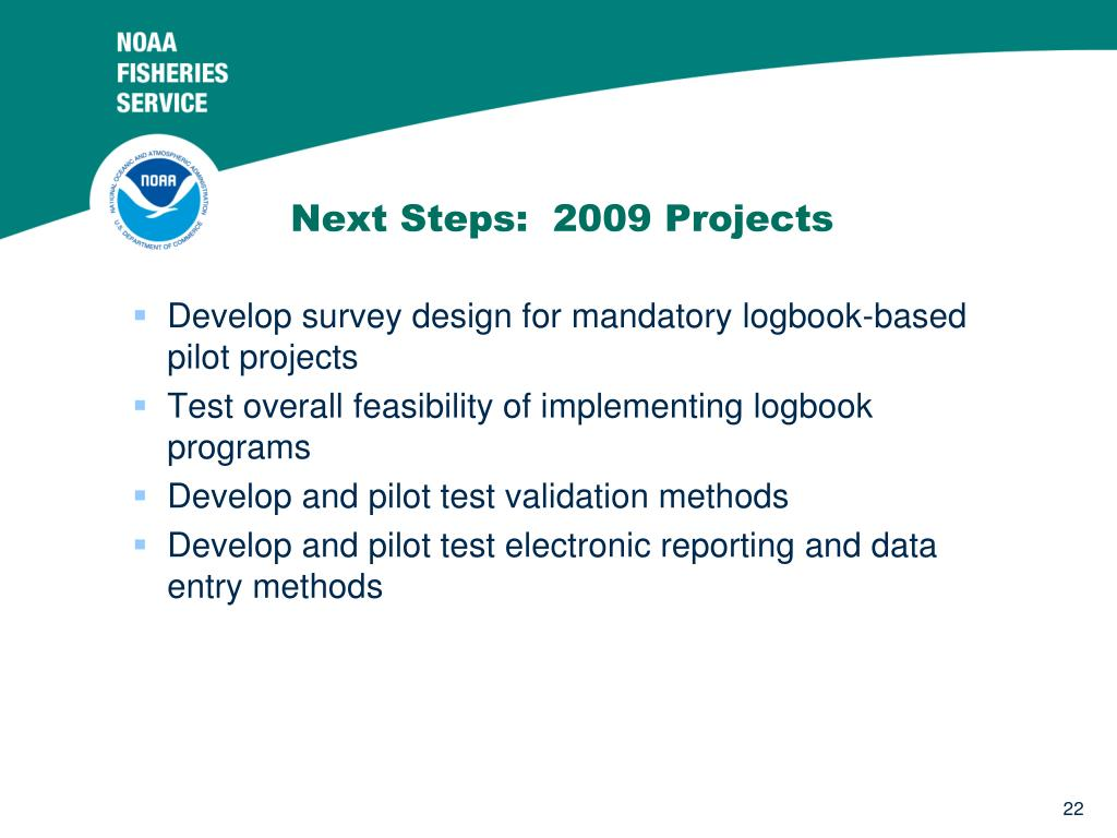 Next Steps:  2009 Projects