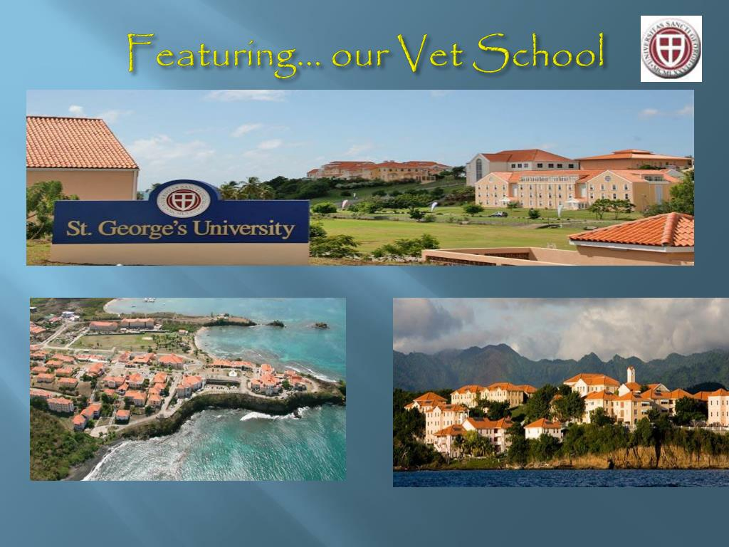 Featuring... our Vet School