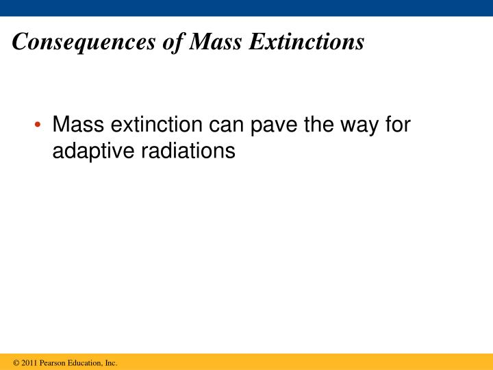 Consequences of Mass Extinctions
