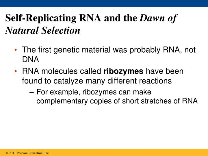 Self-Replicating RNA and the