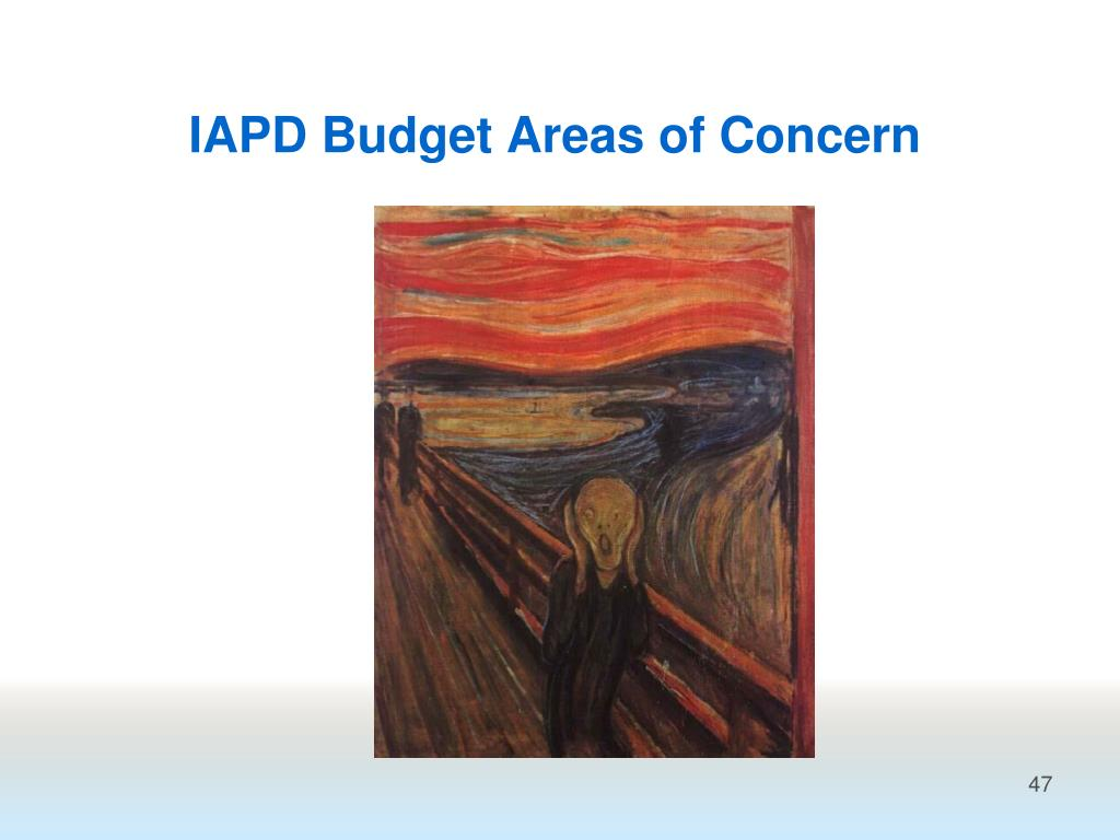 IAPD Budget Areas of Concern