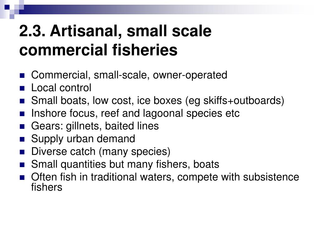 2.3. Artisanal, small scale commercial fisheries