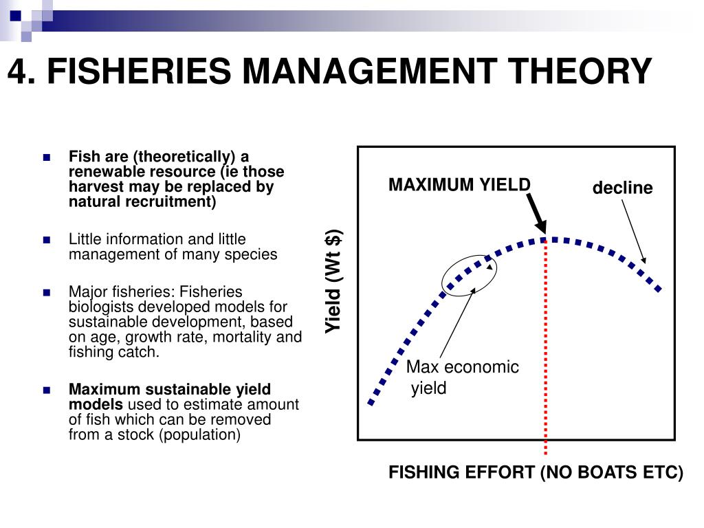 4. FISHERIES MANAGEMENT THEORY
