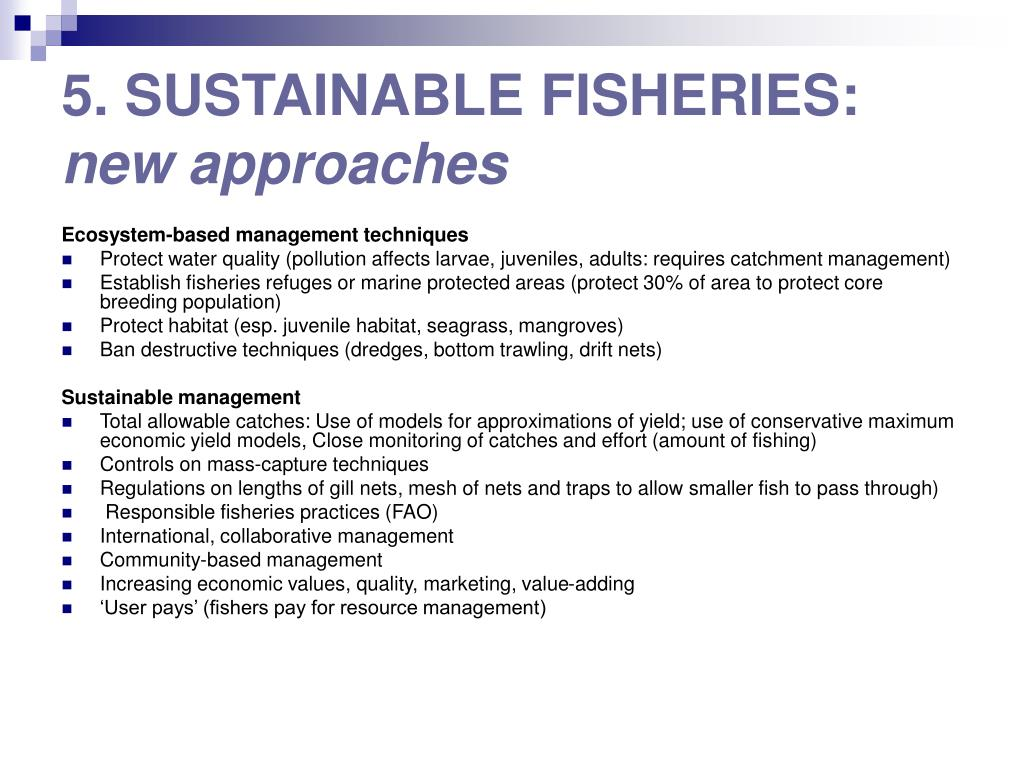 5. SUSTAINABLE FISHERIES: