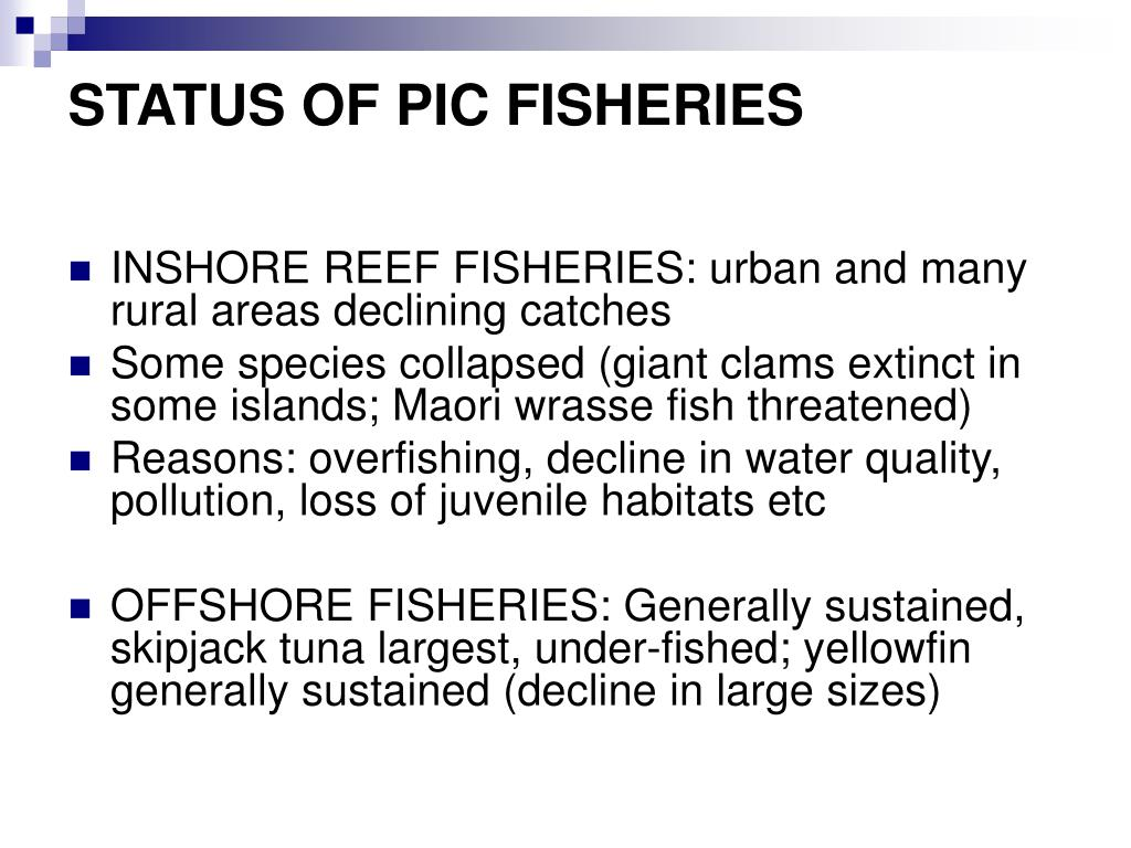 STATUS OF PIC FISHERIES