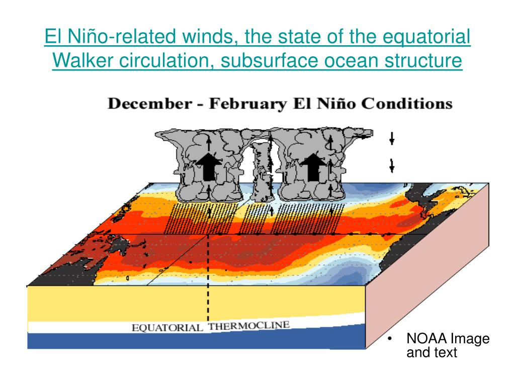 El Niño-related winds, the state of the equatorial Walker circulation, subsurface ocean structure