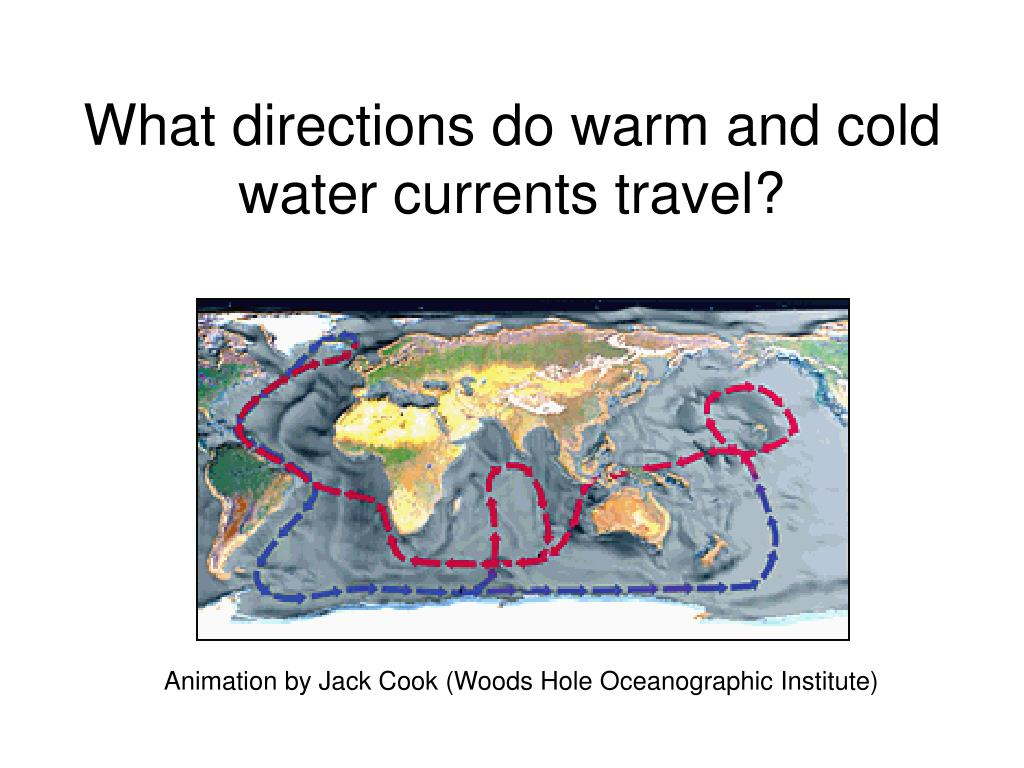 What directions do warm and cold water currents travel?
