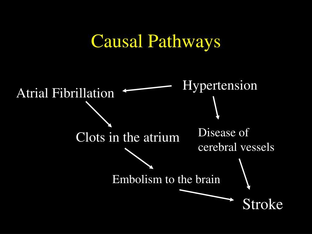 Causal Pathways