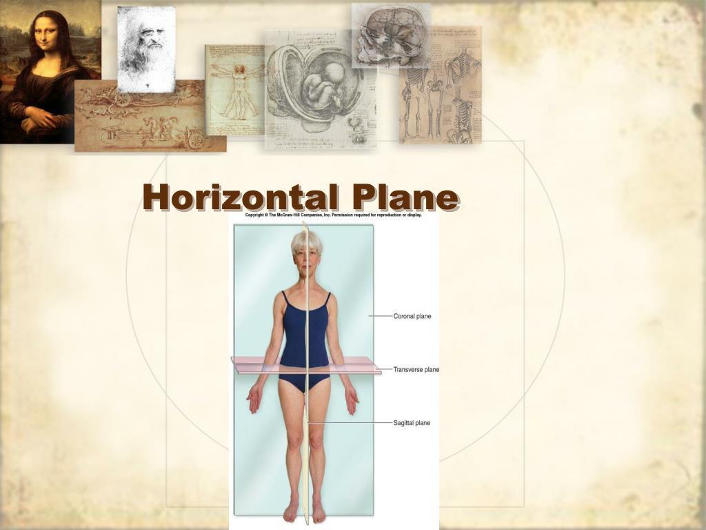 Horizontal Plane